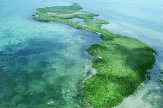 Big Munson Island, Florida Keys